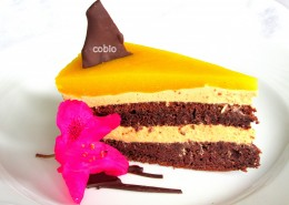 Kakavova torta z mangovim prelivom